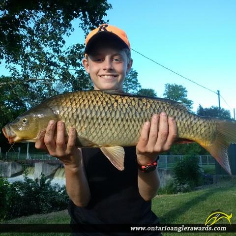 "30"" Carp caught on Maitland River"