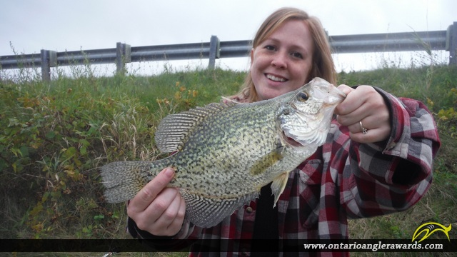 "13"" Black Crappie caught on St. Lawrence River"