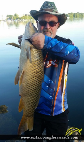 "36"" Carp caught on Lake Ontario"