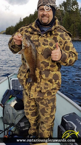 """17.25"""" Smallmouth Bass caught on Cassel Lake"""