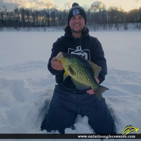 "15"" Black Crappie caught on Gloucester Pool"