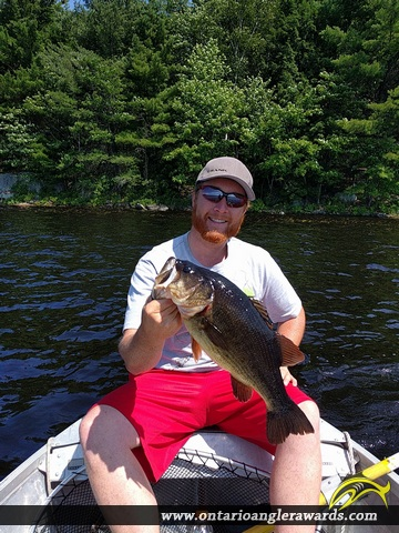 "18"" Largemouth Bass caught on Lake Muskoka"