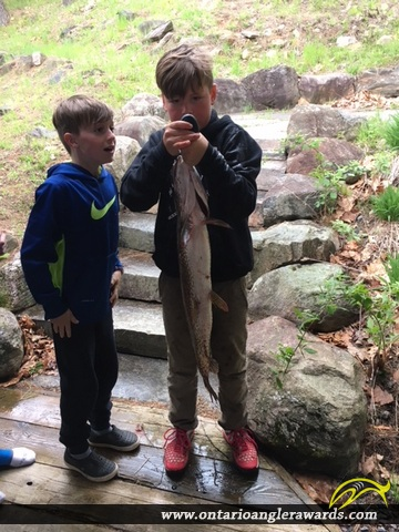 """33"""" Northern Pike caught on Lake of Bays"""