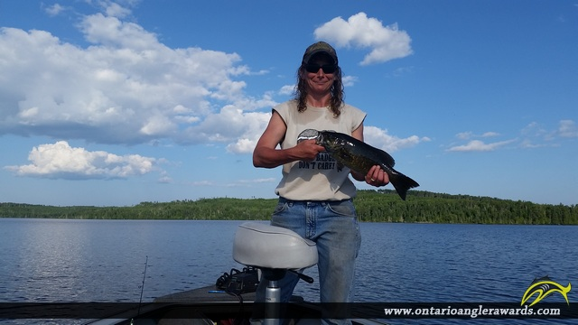 """17"""" Smallmouth Bass caught on Icarus Lake"""