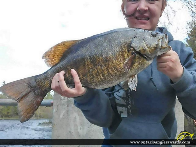 """28"""" Smallmouth Bass caught on Crowe Lake"""