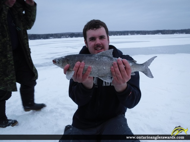 "22"" Whitefish caught on Lake Bernard"