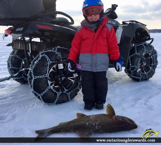 "34"" Lake Trout caught on Lake Simcoe"
