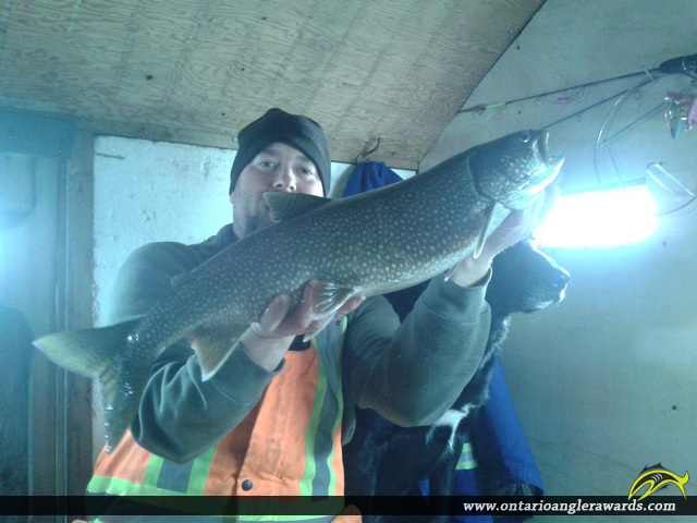 "29"" Lake Trout caught on Lake Rosseau"