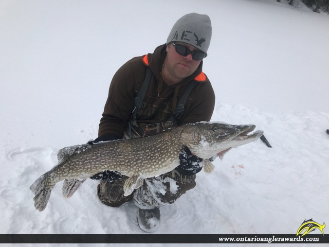 """42.5"""" Northern Pike caught on Triquet Lake"""