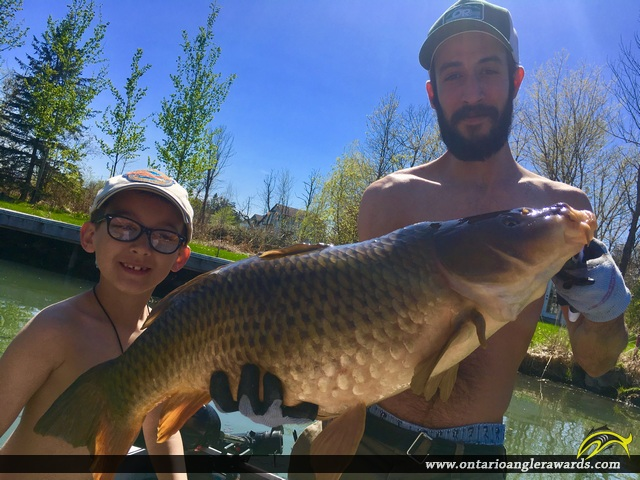 "30"" Carp caught on St. Lawrence River"