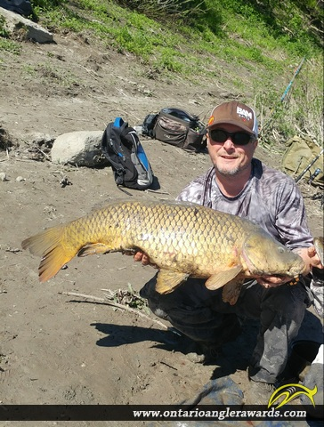 "37"" Carp caught on Nation River"