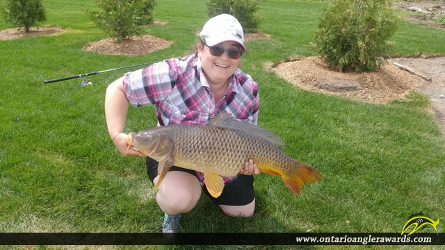 "31"" Carp caught on Rideau River"