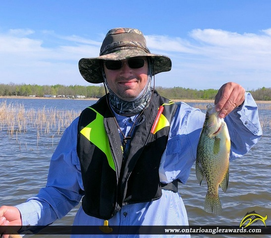 """13.5"""" Black Crappie caught on Lake of the Woods"""