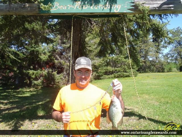 "11"" Black Crappie caught on Wabigoon Lake"