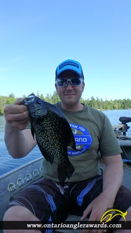 "12.00"" Black Crappie caught on Jacks Lake"