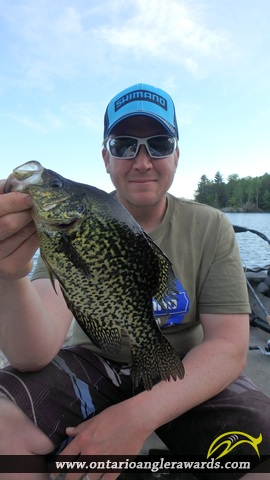 "12.01"" Black Crappie caught on Jacks Lake"