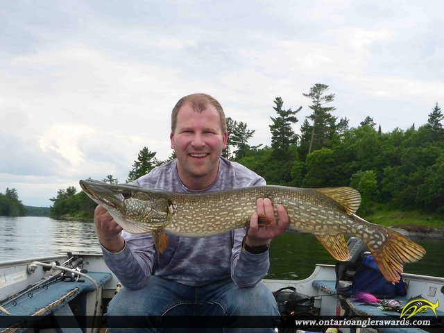 "37.5"" Northern Pike caught on Lake of the Woods"