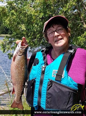 "18"" Brook/Speckled Trout caught on Secret Lake"