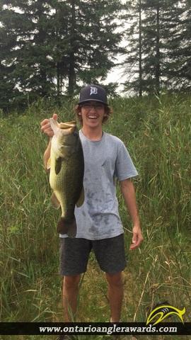 "20"" Largemouth Bass caught on Irrigation Pond"