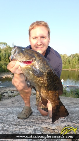 """19.00"""" Smallmouth Bass caught on The South River"""