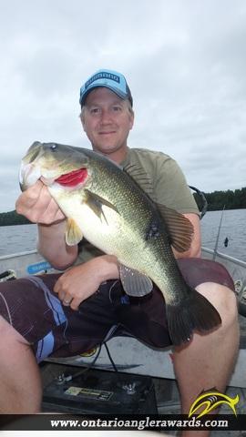 """18.11"""" Largemouth Bass caught on Graham Lake"""