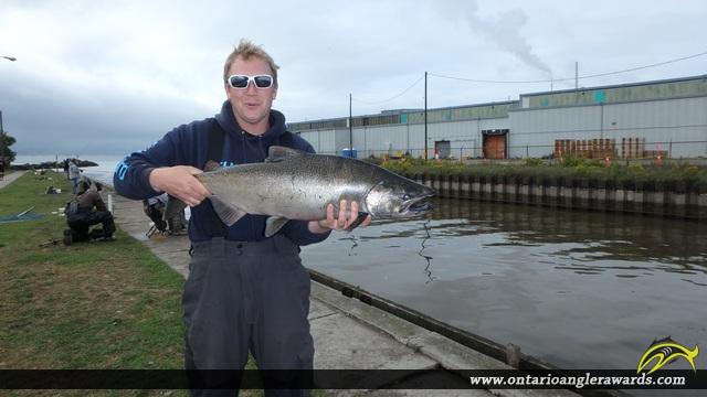 "37.00"" Chinook Salmon caught on Ganaraska River"