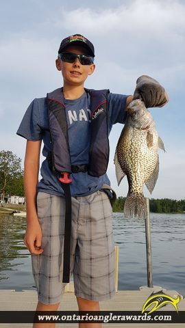 "14.5"" Black Crappie caught on Conestogo Lake"