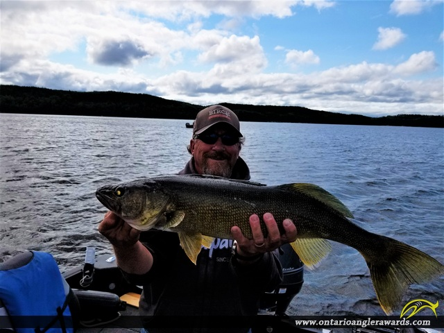 "29"" Walleye caught on Big Sand Lake"