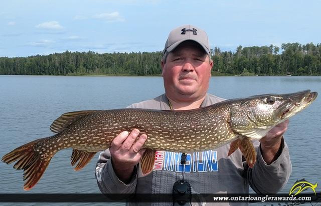 "39"" Northern Pike caught on Wawang Lake"