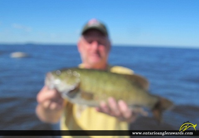 """18.5"""" Smallmouth Bass caught on Lake of the Woods"""