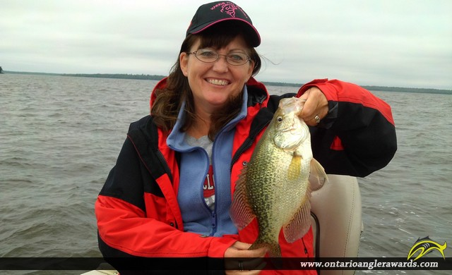 """15"""" Black Crappie caught on Lake of the Woods"""