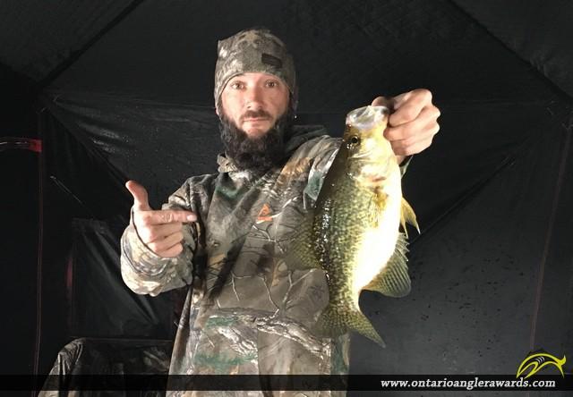 """13.5"""" Black Crappie caught on Ottawa river"""