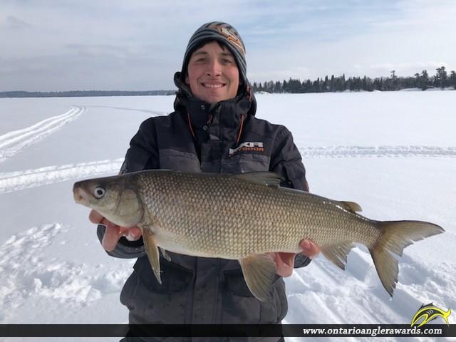 """23.5"""" Whitefish caught on Shoal Lake"""