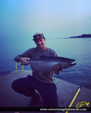 """38"""" Chinook Salmon caught on Lake Ontario"""