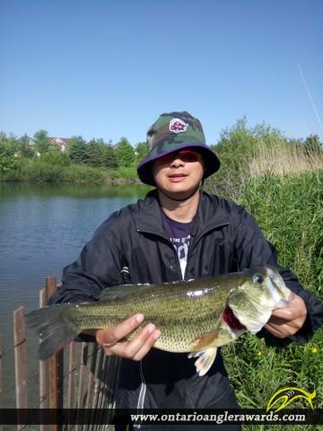 "18"" Largemouth Bass caught on Berczy Park"