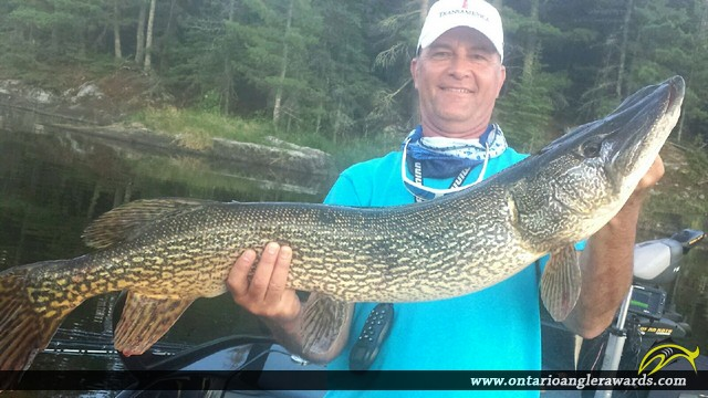 """41.75"""" Northern Pike caught on Lake of the Woods"""