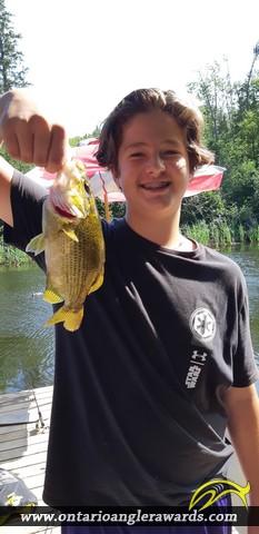 "10.5"" Rock Bass caught on Magnetawan River"