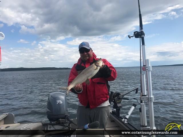 """22.75"""" Whitefish caught on White Otter Lake"""