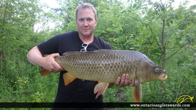 "30.00"" Carp caught on Cobourg Creek"