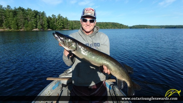 "38.00"" Muskie caught on Restoule Lake"