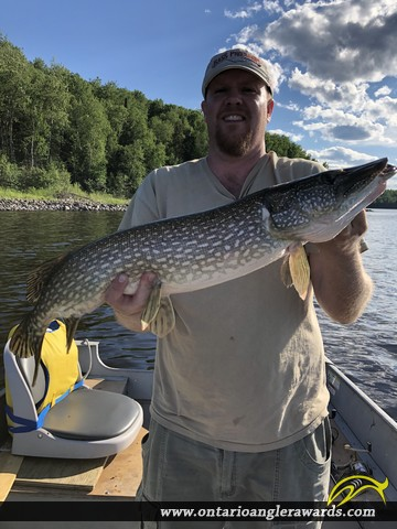 """33"""" Northern Pike caught on English River"""
