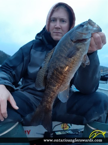 "17.00"" Smallmouth Bass caught on The South River"