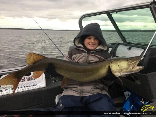 "44.5"" Muskie caught on Pigeon Lake"