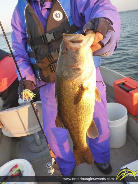 """18"""" Largemouth Bass caught on Rice Lake"""