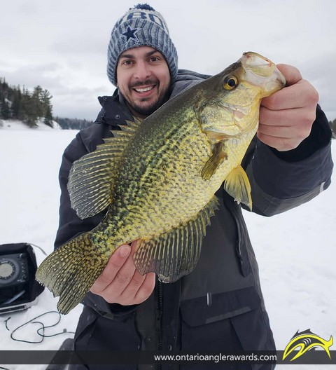 """15.5"""" Black Crappie caught on Lake of the Woods"""