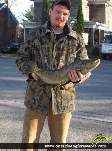 "26.5"" Brown Trout caught on Lake Ontario"
