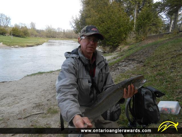 "25.5"" Rainbow Trout caught on Ganaraska River"