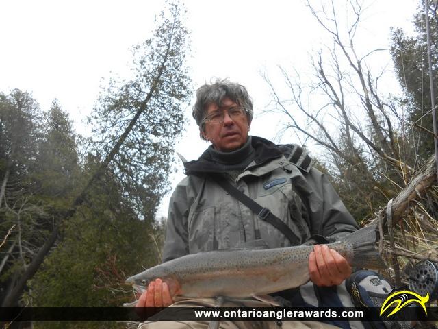 "25"" Rainbow Trout caught on Ganaraska River"