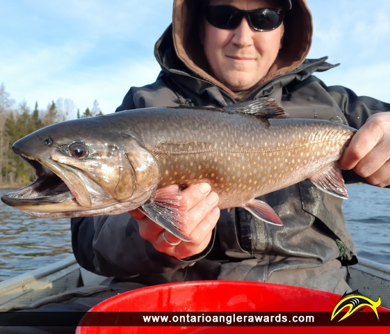 """20.00"""" Brook/Speckled Trout caught on Little Beaver"""