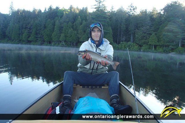 """22"""" Brook/Speckled Trout caught on Little Trout Lake"""